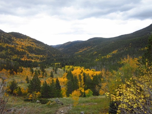 Fall Colors at Hessie