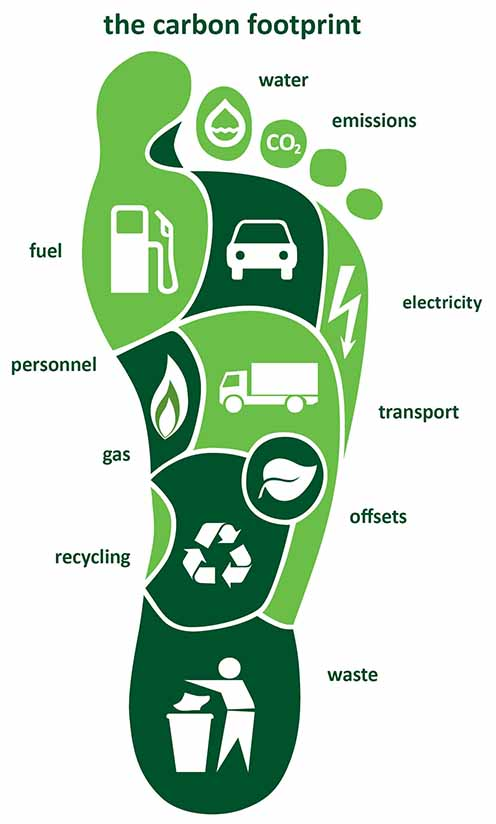 What Is My Carbon Footprint, And How Do I Reduce It? - Lessons ...