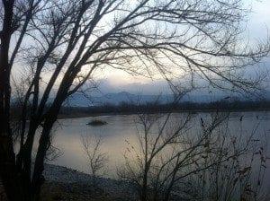 Walden Ponds looking West
