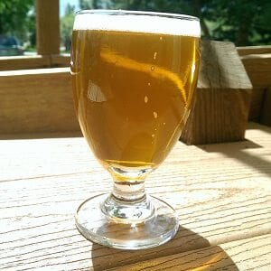 Twisted Pine Brewing Co Hop Zealot