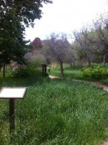 settlerspark (3)