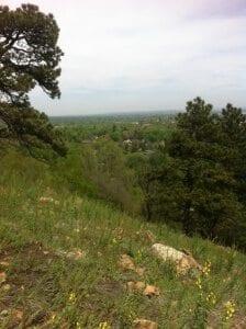 settlerspark (4)