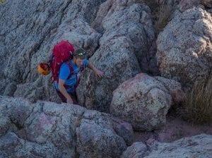 Climb Crop