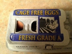 Cage Free