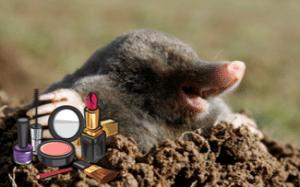Beautiful Mole