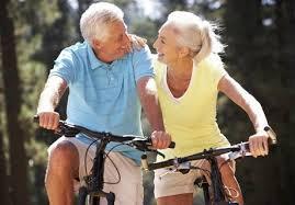 seniors bikes