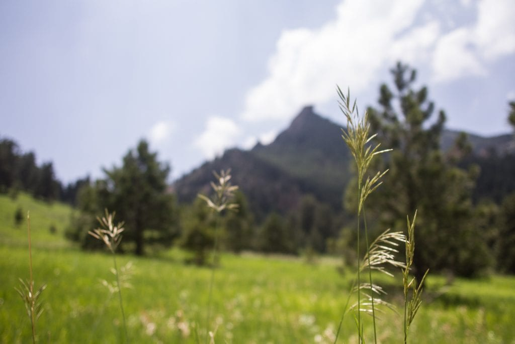 Boulder Nature